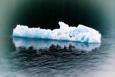 Iceberg near Endicott Glacier