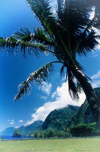 Kaluapapa Peninsula