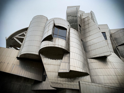 Building by Frank Gehry, Architect