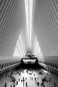 The Oculus at One World Trade Center