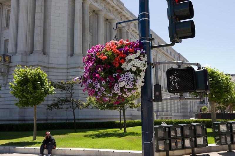 WALK - with flowers