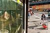 A Chinatown stare