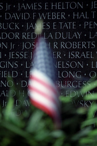 Vietnam Memorial and American Flag