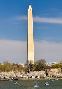 Washington Monument - Cherry Blossoms