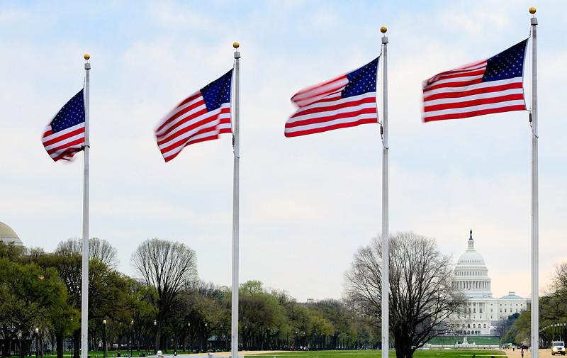 US Capitol from Washington Monument