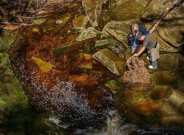 Crossing the stream at Elakala Falls