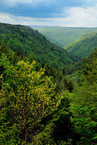 Blackwater Falls State Park Overlook