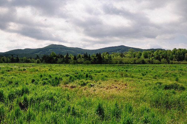 Canaan Valley in West Virginia
