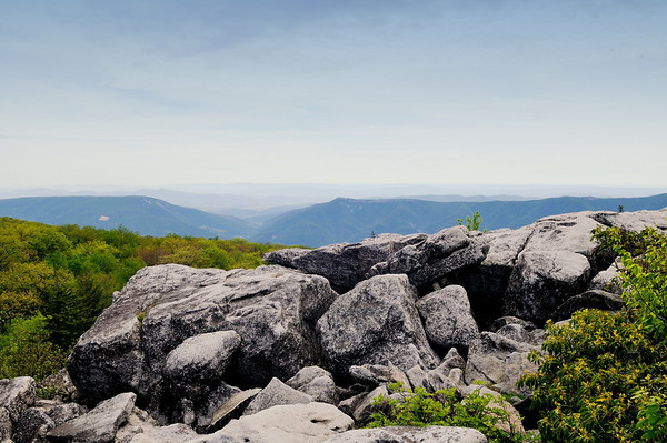 Scenic View from Dolly Sods