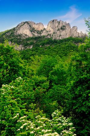 Seneca Rocks WV