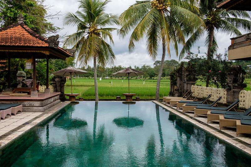 Swimming pools and rice paddies