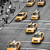 Taxis Rule the City