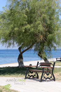 Bench in the park next to the sea and beach