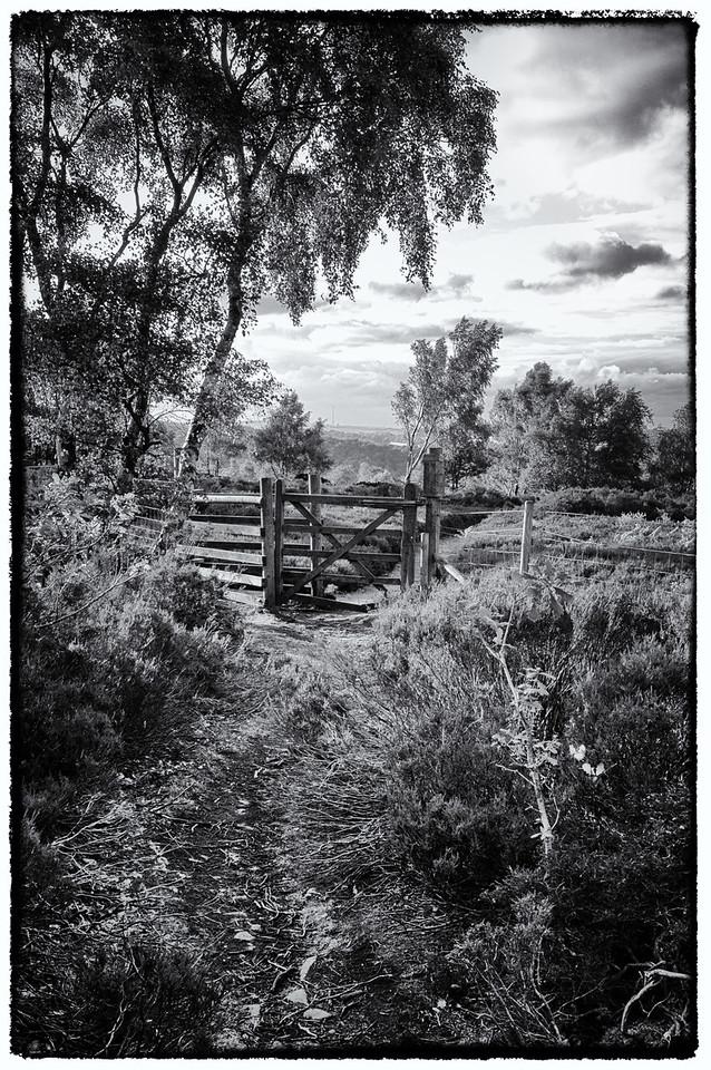 Emley Moor, England