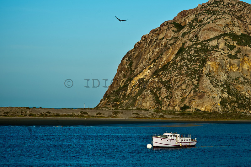 Morro Bay Morning