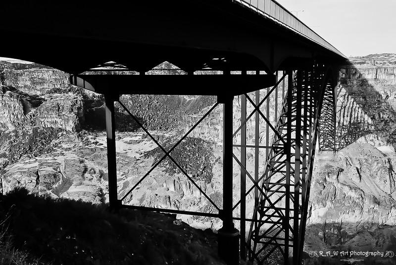 snake bridge-1