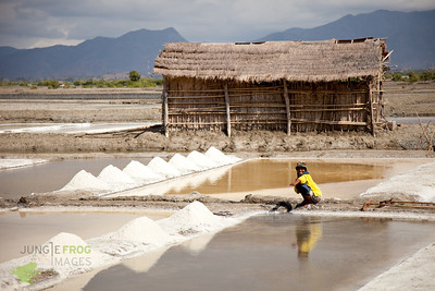 Salt plains of Sumbawa