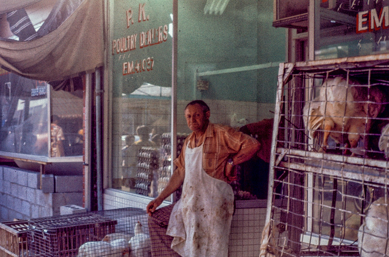 Poultry Shop
