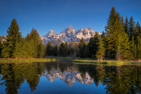 Schwabacher's Landing - Grand Teton Nation Park