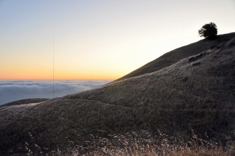 L28 Mt. Tamalpais, California, USA