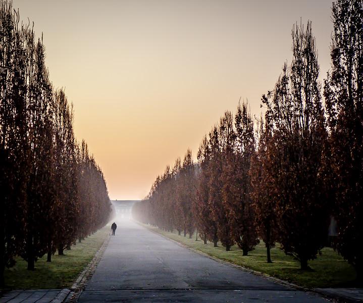 Belgium Misty Morning Walk