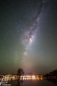 Milky Way over That Wanaka Tree