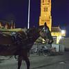 Bobby our faithful carriage leader