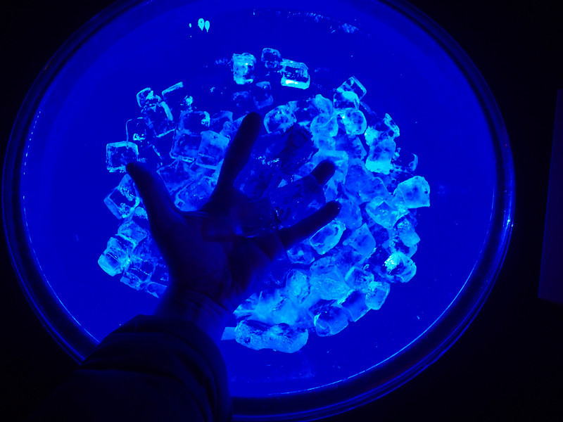 Cool Ice bin