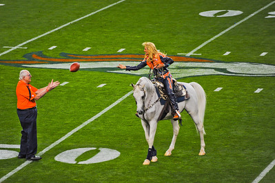 Ann Judge-Wegener riding Thunder who is an 11-year-old Arabian gelding and 2013 is his tenth season as the Broncos' mascot.  The current Thunder took over for Thunder, Sr., who was retired after the 2003 football season.  The original Thunder is also an Arabian, and he served for ten season until he turned 21 years of age.