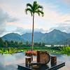 Kauai Palm Drums
