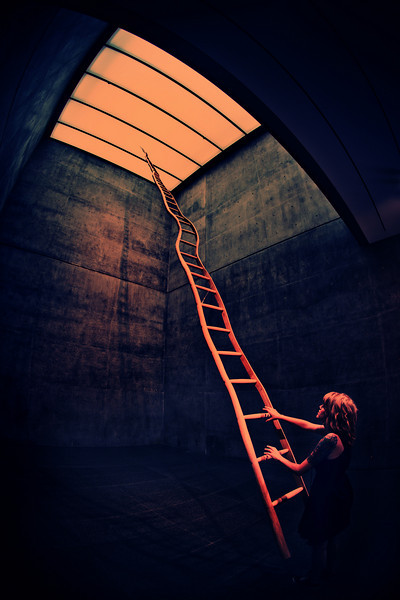 'Untitled - Ladder by Martin Puryear'<br /> Daniel Driensky © 2010