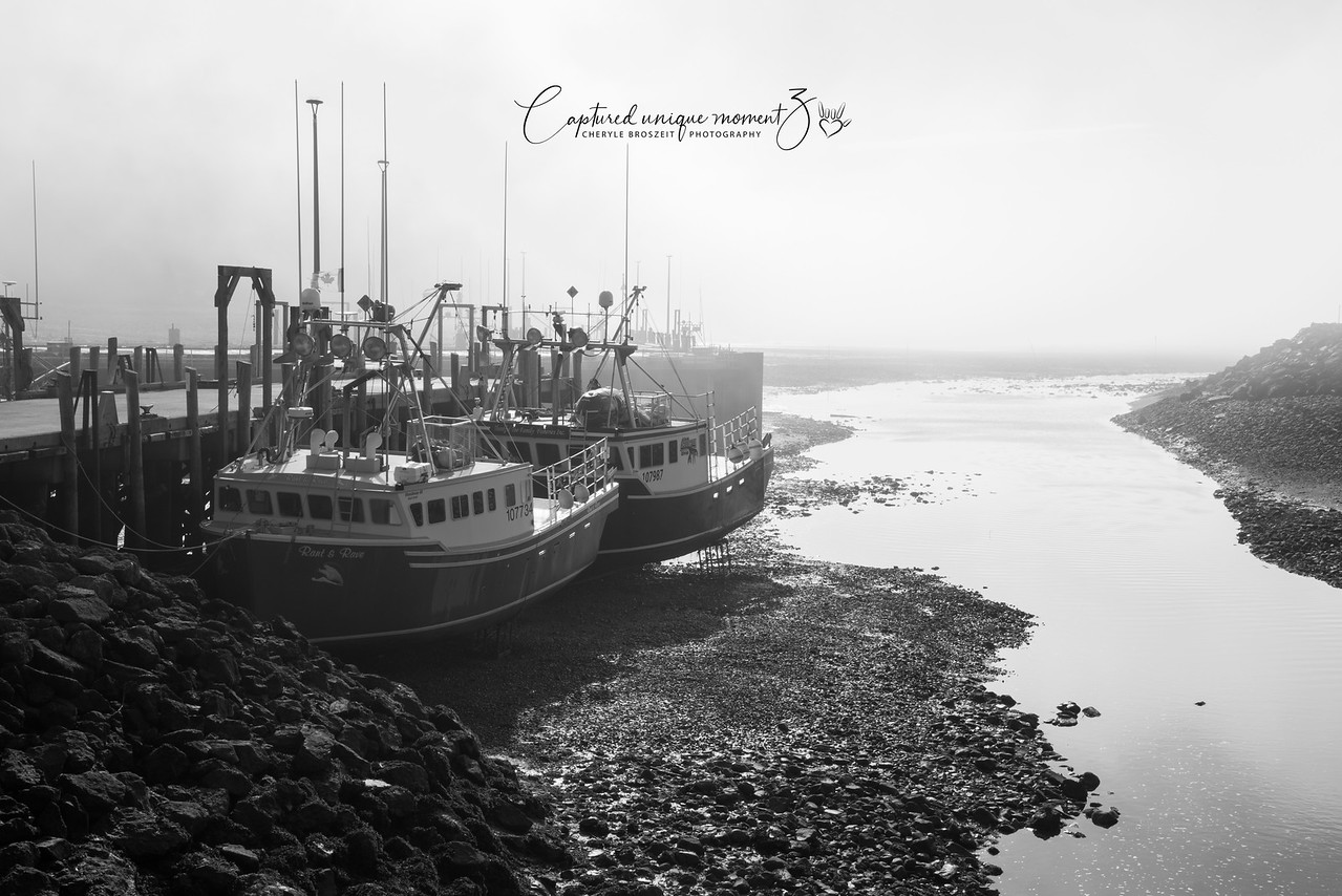 Alma, New Brunswick Tide down Black and White
