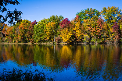 Fall Color At Pittsfield Illinois City Lake