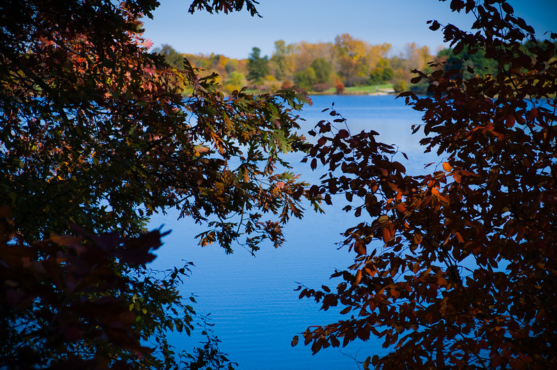 Took a walk around the Pittsfield Illinois City Lake in Pike County Illinois on October 15th, 2012 and was certainly not disappointed by the beautiful fall color display. I'd heard there was RV camping sites there and was pleasantly surprised to discover they not only had sites but they have full hook ups for only $12 per day. Needless to say I'm very much looking forward to staying over for a visit soon!