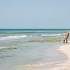 Metal Detecting on Honeymoon Island