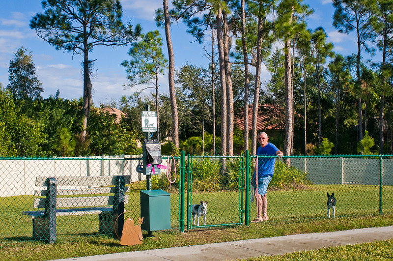 The Dog Park At Myakka River Motorcoach Resort