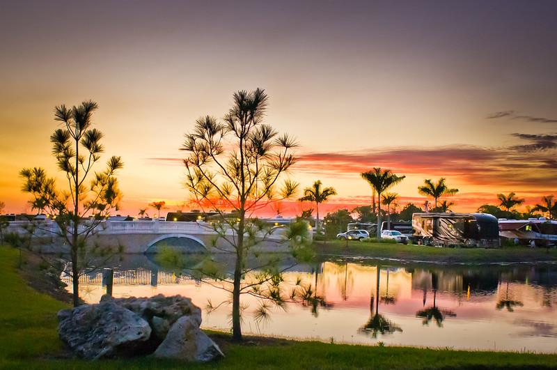 Pine Sunset ~ Myakka River Motorcoach Resort