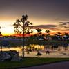 Lake Pine Sunset ~ Myakka River Motorcoach Resort