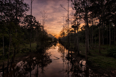 Sunrise at Angkor Thom Moat, Cambodia - 2015