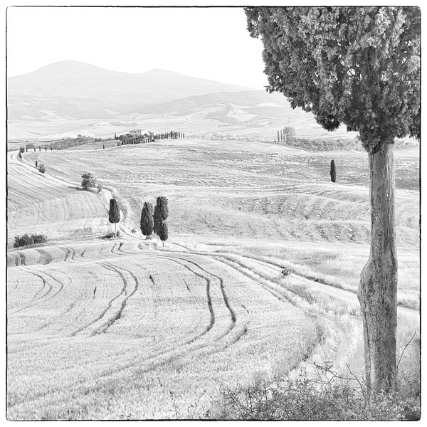 Gladiator Fields, Pienza