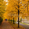 A couple is enjoying an autumn walk on the Kehrwiederwall in Hildesheim, Germany.