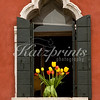 A vase with tulips is displayed in a window in Venice