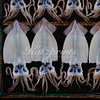 Squid is displayed on a drying rack in front of a store in Ajiro