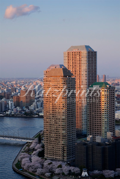 The setting sun is illuminating some Tokyo high risers