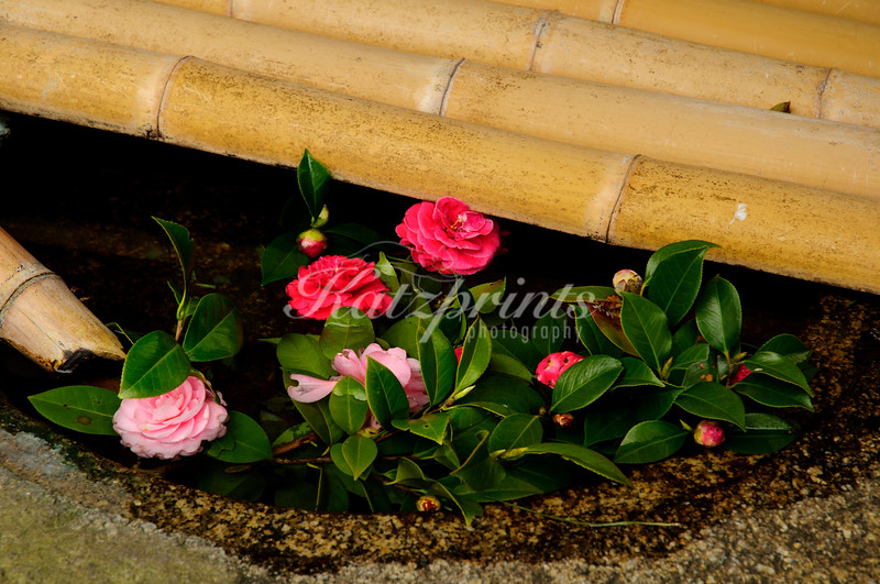 Flowers float in a fountain at Atami Castle