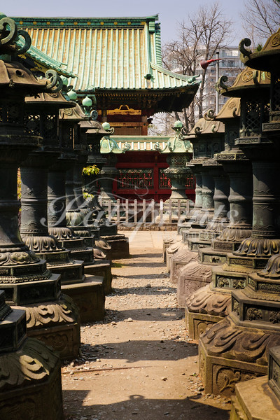 Stone lanterns at Ueno Tōshō-gū shrine in Tokyo