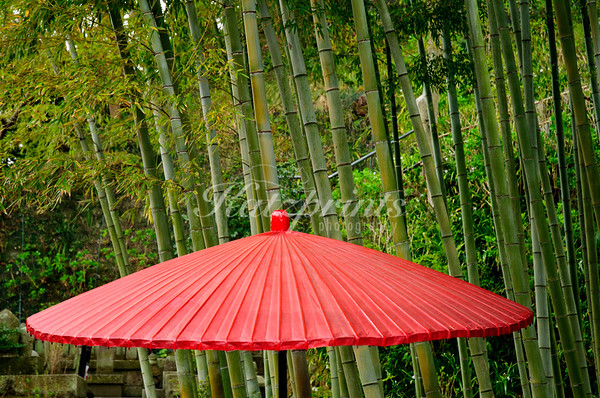 Paper umbrella and bamboo at Hase-dera temple