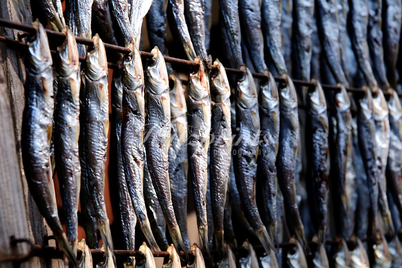 Rows of fish are drying in the sun in front of a store in Ajiro