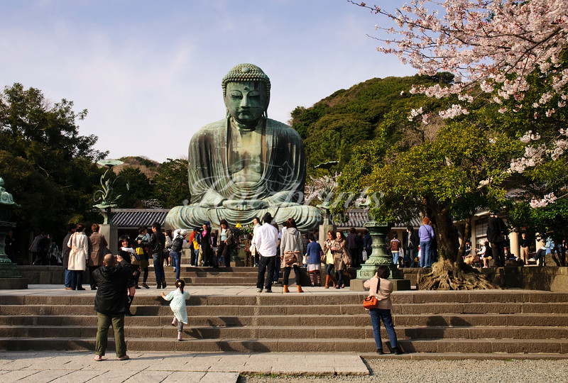 The Great Buddha (Daibutsu) in Kamakura at the Kōtoku-in temple is more than 13 m high and probably dates from 1252; it is a Japanese national treasure