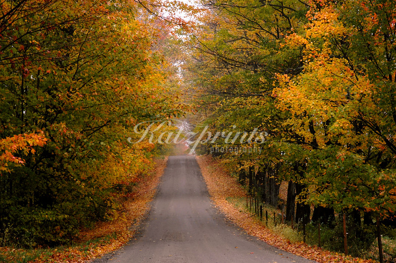Autumn colors along country road near Stowe, Vermont
